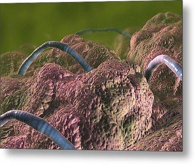 Intestinal Parasites, Artwork Metal Print by David Mack
