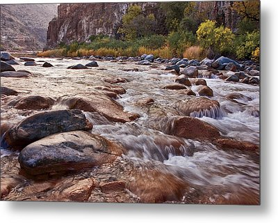 Intimate Waters On The Salt River Metal Print by Dave Dilli