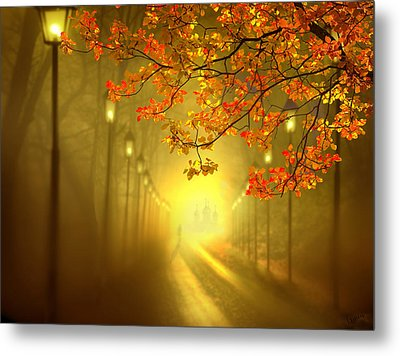 Into The Light Metal Print by Igor Zenin