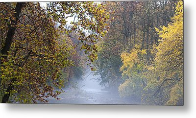 Into The Mist Metal Print by Bill Cannon