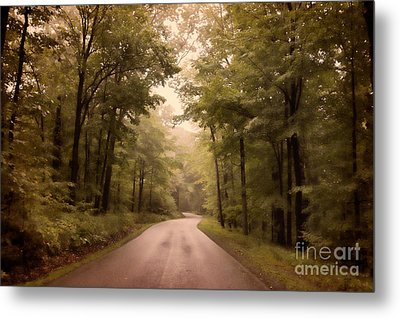 Into The Mists Metal Print by Lois Bryan