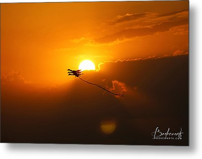 Into The Sun Metal Print by Robin Lewis