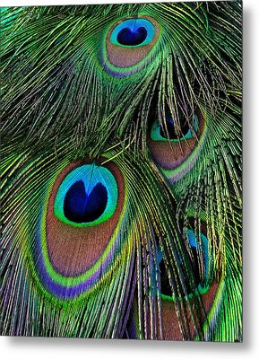 Iridescent Eyes Metal Print