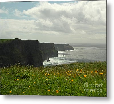 Irish Coast Cliffs Of Moher In Spring Ireland Metal Print