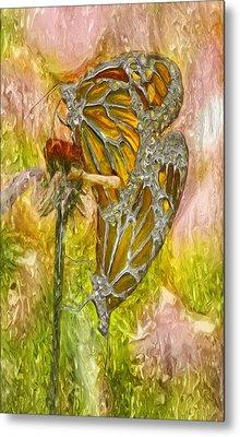 Iron Butterflys Metal Print by Jack Zulli