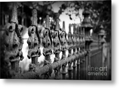 Iron Fence 2 Metal Print by Perry Webster