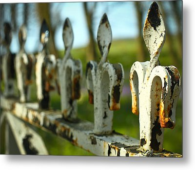 Iron Gate II Metal Print by Jacqui Collett