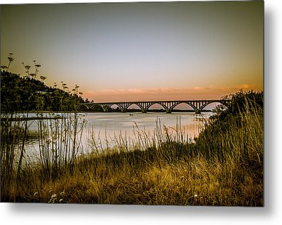 Metal Print featuring the photograph Isaac Lee Patterson Bridge by Randy Wood