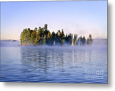 Island In Lake With Morning Fog Metal Print by Elena Elisseeva