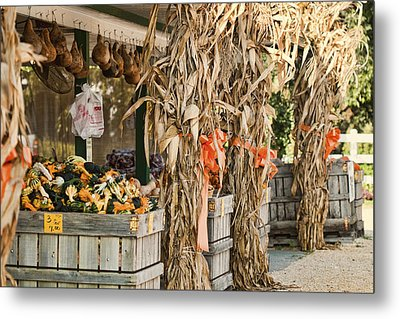 Isoms Orchard In Fall Regalia Metal Print by Kathy Clark