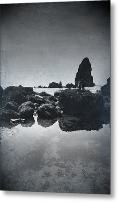 It Seems So Shallow And Low Metal Print by Laurie Search