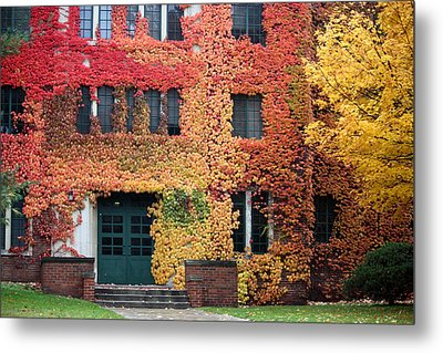 Ivy League Metal Print by Penny Hunt