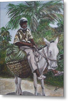 Jamaican Donkey Power Metal Print by Kim Selig