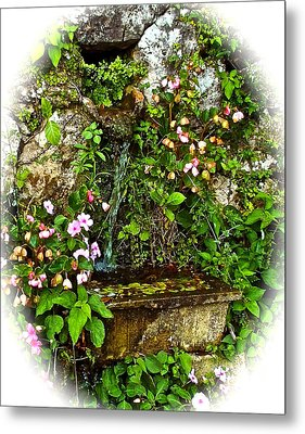 Japanese Water Feature Metal Print