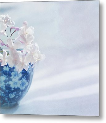 Jasmine Flowers In Pot Metal Print