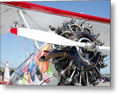 Jelly Belly Metal Print by Gary Rose