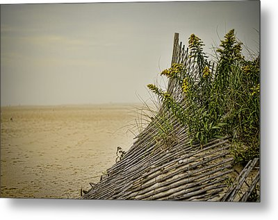Jersey Shore Metal Print by Heather Applegate
