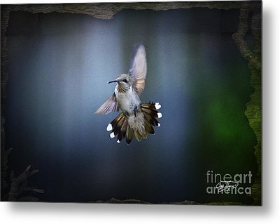 Jet Fighter Metal Print by Cris Hayes