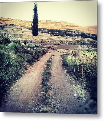 #jo #jordan #amman #nature #green #road Metal Print by Abdelrahman Alawwad