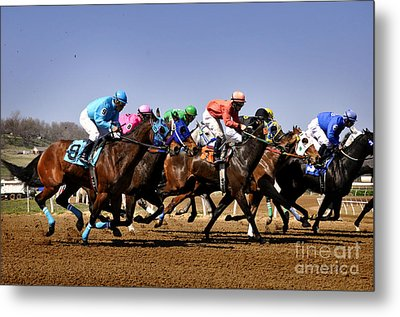 Metal Print featuring the photograph Jockeying For Position by Nava Thompson