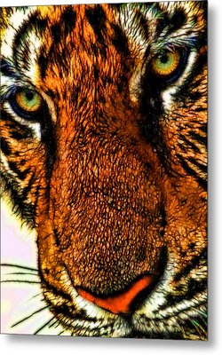 Metal Print featuring the photograph Just Face It by Joetta West