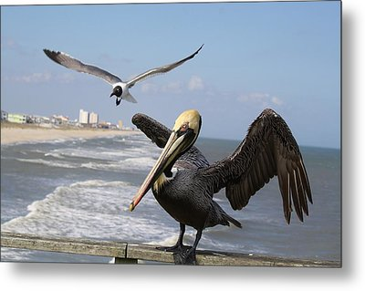 Just Passing By To Say Hello Metal Print by Paulette Thomas