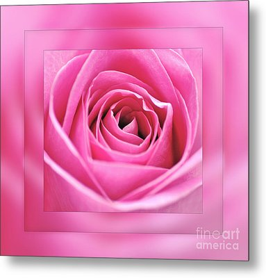 Just Pink Metal Print by Kaye Menner