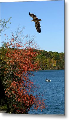 Metal Print featuring the photograph Juvenile And Fishermen by Randall Branham