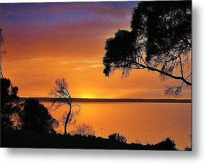 Kangaroo Island - Sunrise Metal Print by David Barringhaus