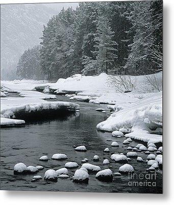 Katun River Metal Print by Elena Filatova