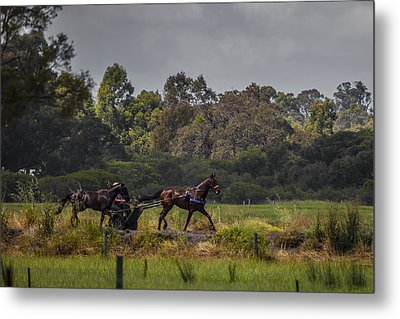 Keeping Pace Metal Print by Dave Kelly