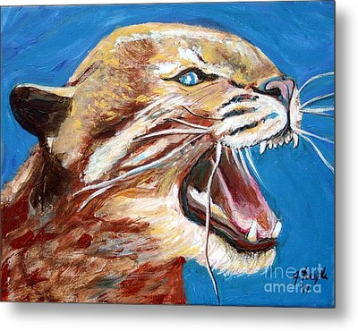 Kentucky Wildcat Metal Print by Jeanne Forsythe