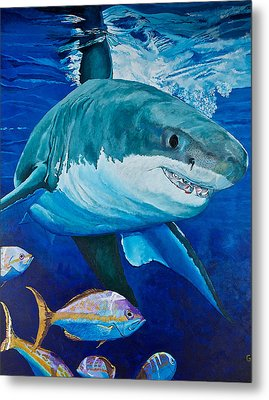 Kids Love Sharks Metal Print by Terry Gill