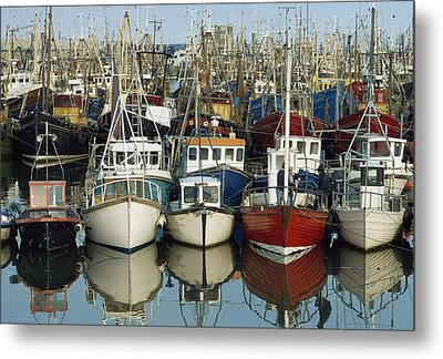 Kilkeel, Co Down, Ireland Rows Of Boats Metal Print by The Irish Image Collection