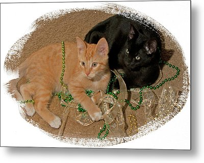 Kitten Brothers Metal Print