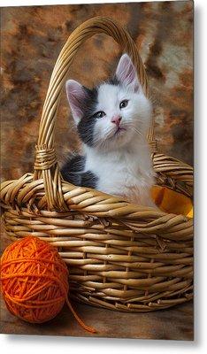 Kitten In Basket With Orange Yarn Metal Print by Garry Gay