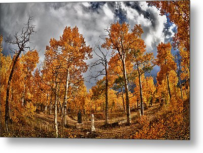 Metal Print featuring the photograph Knights Of Pythias Autumn by Kevin Munro