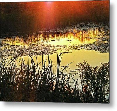 Metal Print featuring the photograph Lacassine Sundown by Lizi Beard-Ward