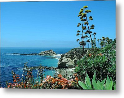 Metal Print featuring the photograph Laguna Beach by Renee Hardison