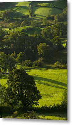 Lake District National Park, Cumbria Metal Print by Axiom Photographic