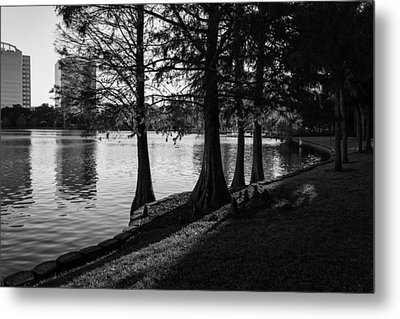 Lake Eola Water Edge Metal Print by Lynn Palmer