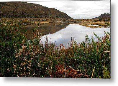 Metal Print featuring the photograph Lake In Killarney by Barbara Walsh