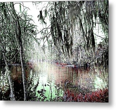 Metal Print featuring the photograph Lake Martin Swamp by Lizi Beard-Ward