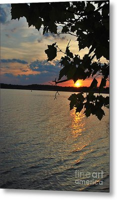 Lakeset Leaves Metal Print by TSC Photography Timothy Cuffe Jr