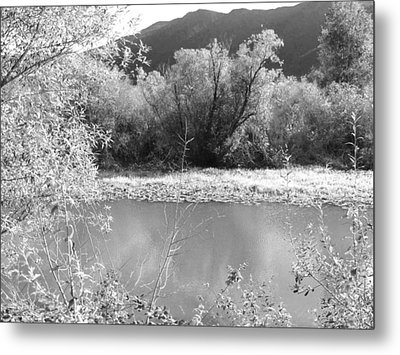 Metal Print featuring the photograph Lakeside Mountain View by Kathleen Grace