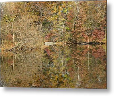 Lakeside Reflections Metal Print by Sarah McKoy