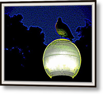 Lamp And The Bird Metal Print by Anand Swaroop Manchiraju