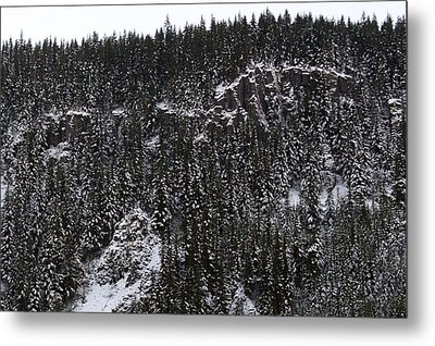 Landscapes - 0004 Metal Print by S and S Photo