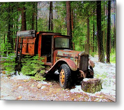 Metal Print featuring the photograph Last Stop by Irina Hays