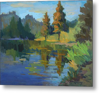 Late Afternoon Light At Harry's Pond Metal Print